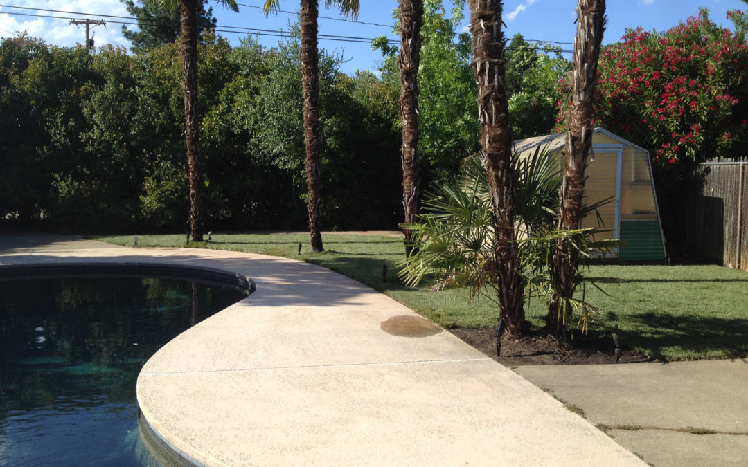 Get your yard ready for spring with concrete